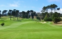 california-golf-club-of-sf-13