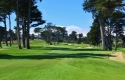 california-golf-club-of-sf-21