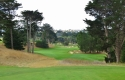 california-golf-club-of-sf-37