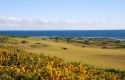 kingsbarns5