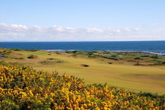 Kingsbarns:  Environment